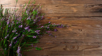 heather on a old wooden table